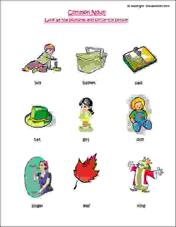 ÿnoun cbse english worksheets class 1