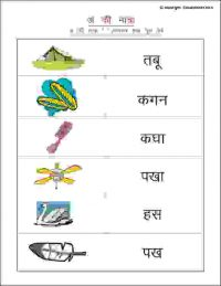 grade 1 hindi worksheets with pictures
