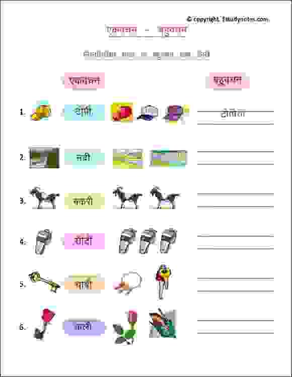 hindi ekvachan bahuvachan worksheets class 2