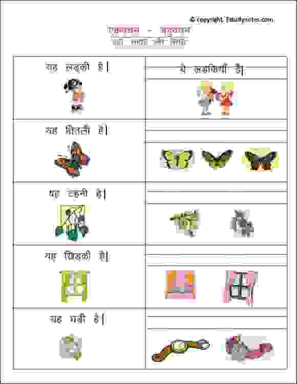 class 2 hindi plural worksheets