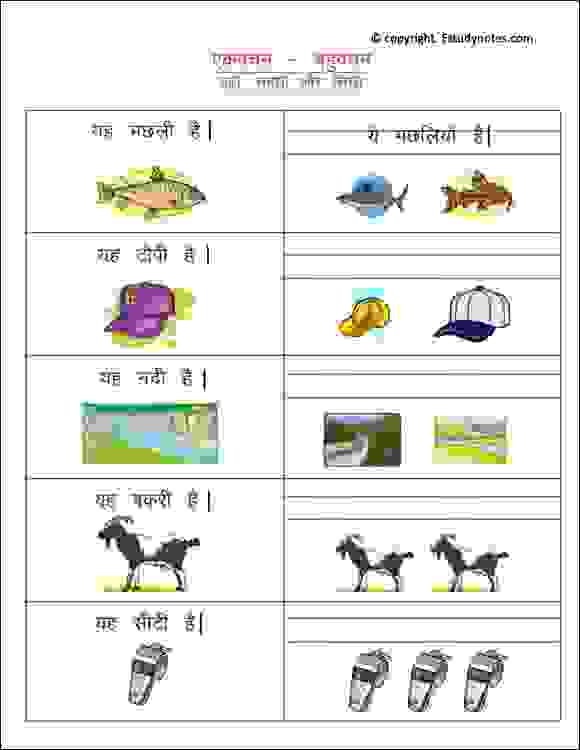 hindi vocabulary ekvachan bahuvachan worksheets