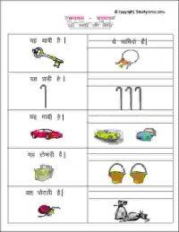 hindi vocabulary ekvachan bahuvachan worksheets