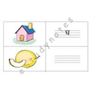 Write correct letter against picture