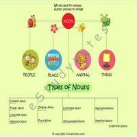 noun teaching infographic for kids