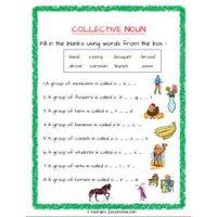english grammar noun worksheets for grade 2