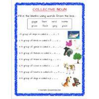 english grammar noun worksheets for class 2