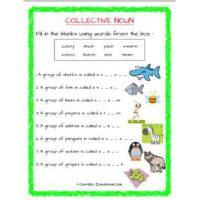 english grammar noun worksheets for std 2
