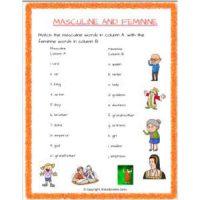 english grammar noun gender worksheets for grade 2