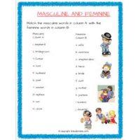 english grammar noun gender worksheets for std 2