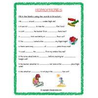 homophones worksheets for grade 2