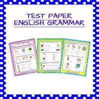 English English Grammar Test Paper 1 Kindergarten 2