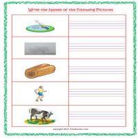 free english worksheets for senior kg