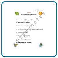 pronoun worksheets