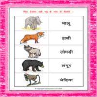 cbse hindi name of animals