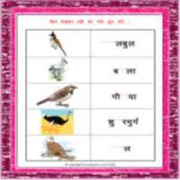 hindi grade 1 name of birds worksheets