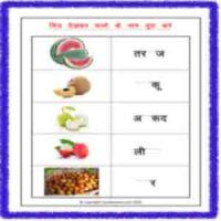 cbse hindi name of fruits
